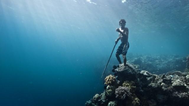 Bajau laut in azione